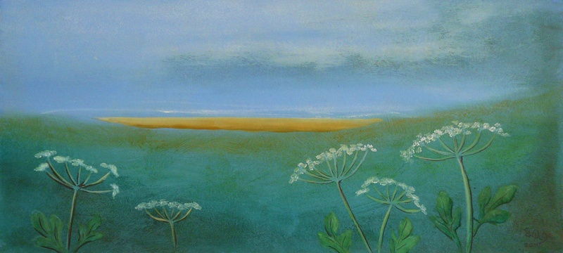 Cow Parsley on the dunes